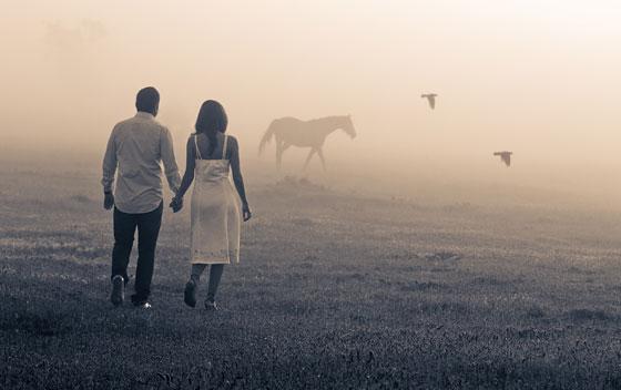 Locatii poze nunta in Arad - sedinta inainte de nunta cai si ceata